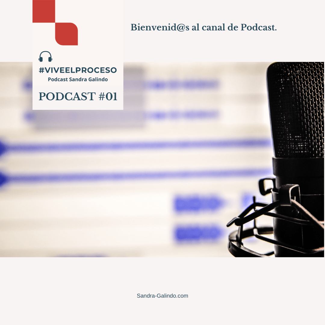 01 PodcastS-G ViveElProceso